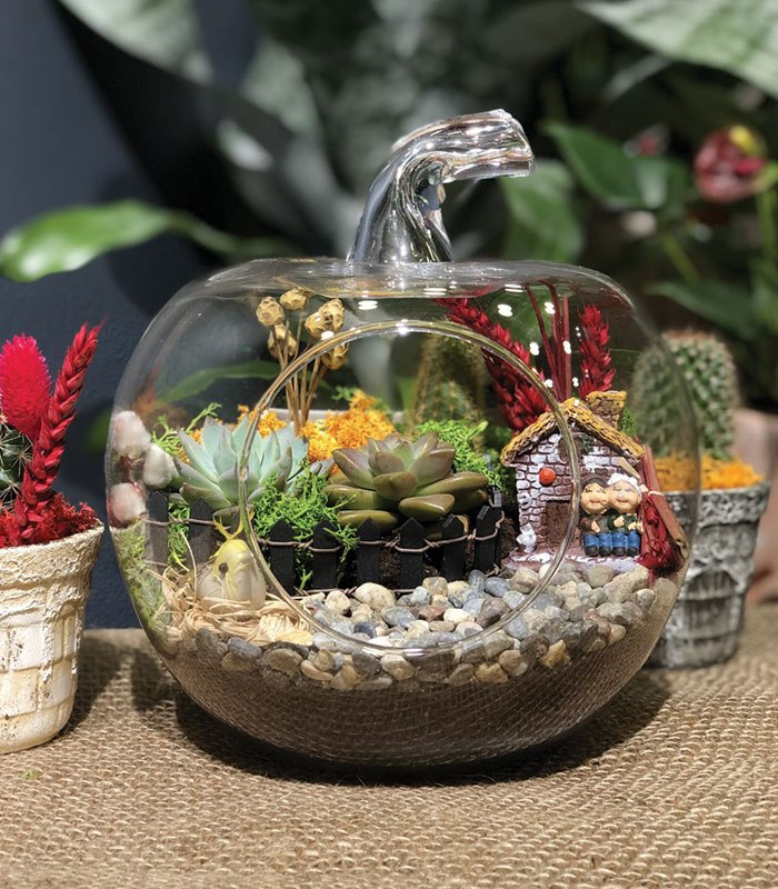 Hobi Bahçe