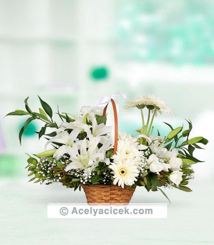 Beyaz Gerbera Çiçeği Aranjmanı