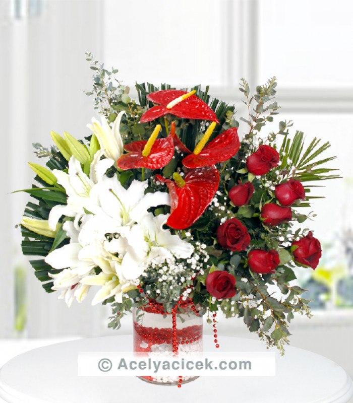Kırmızı Antoryum Çiçeği Asaleti