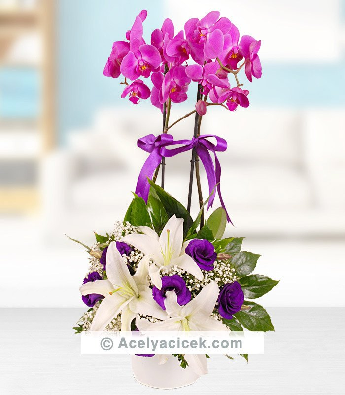 Mor Orkide Çiçeği Ve Lisyantus Aranjmanı