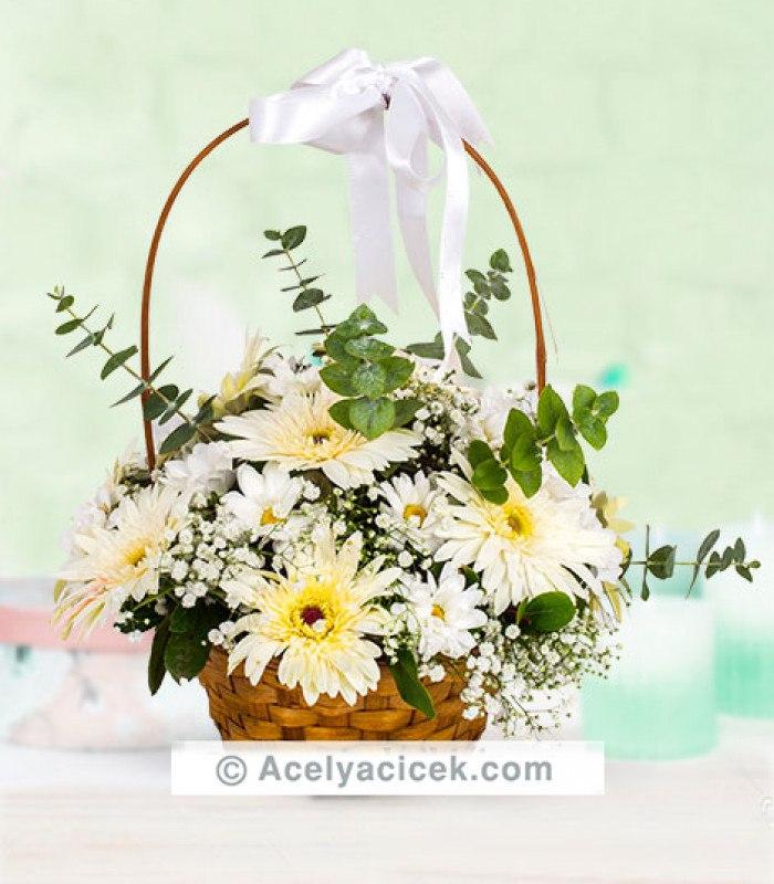 Gerbera Çiçeği Aranjmanı