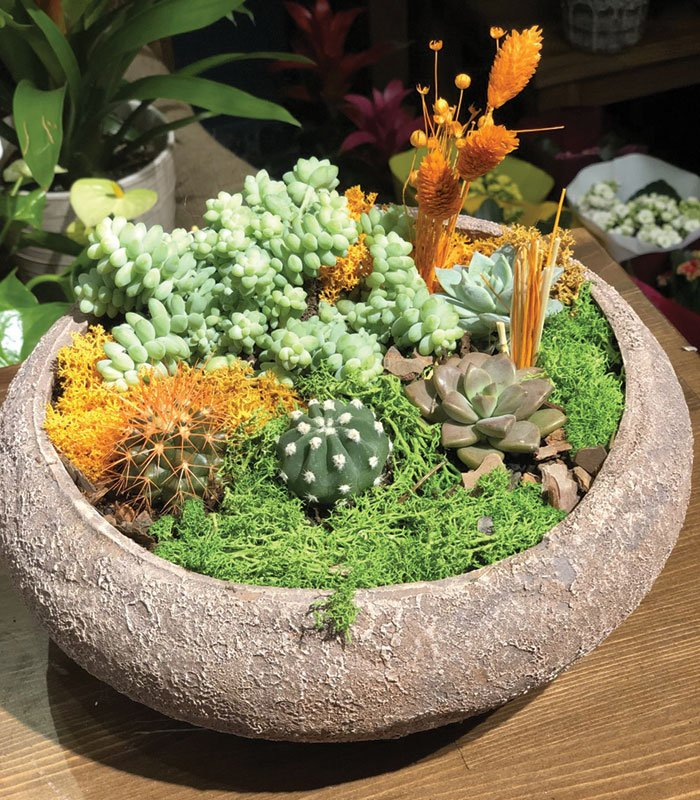 Katibim Bahçesi