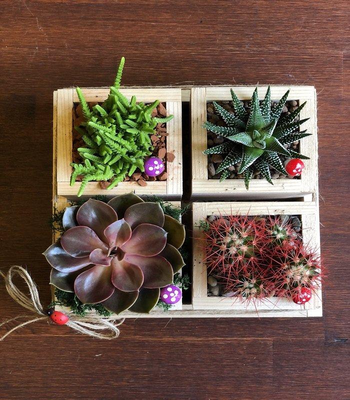 Minyatü Bahçe