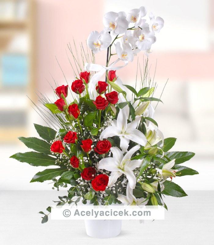 Gerçek Tutku Orkide Çiçeği