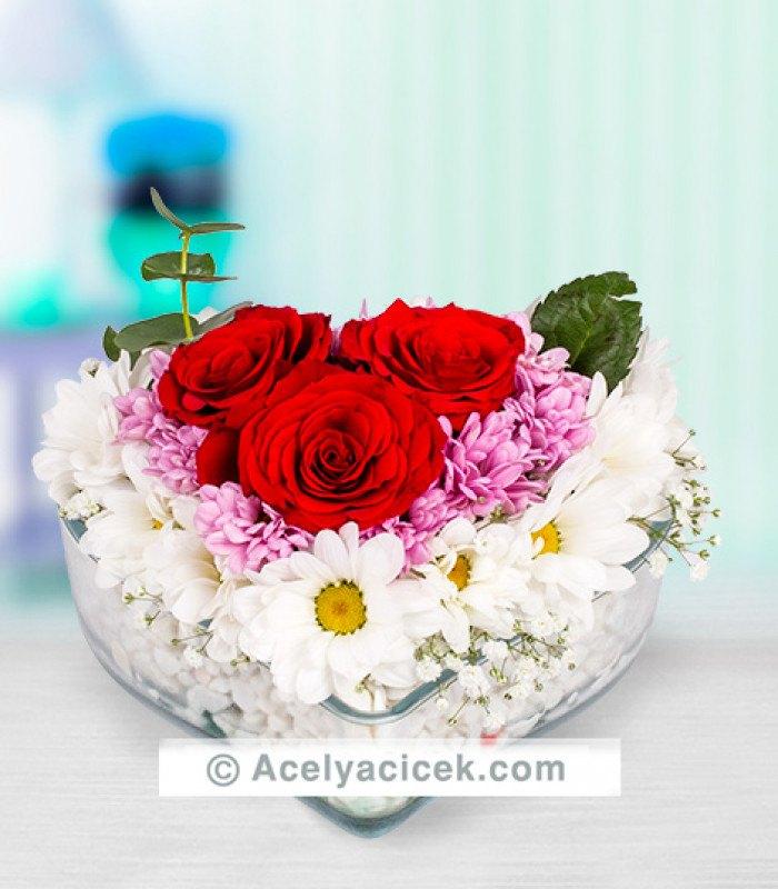 Kırmızı Gül ve Kır Çiçekler