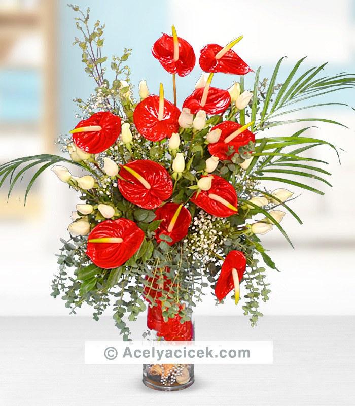 Antoryum Çiçeği ve Beyaz Gül Aranjmanı