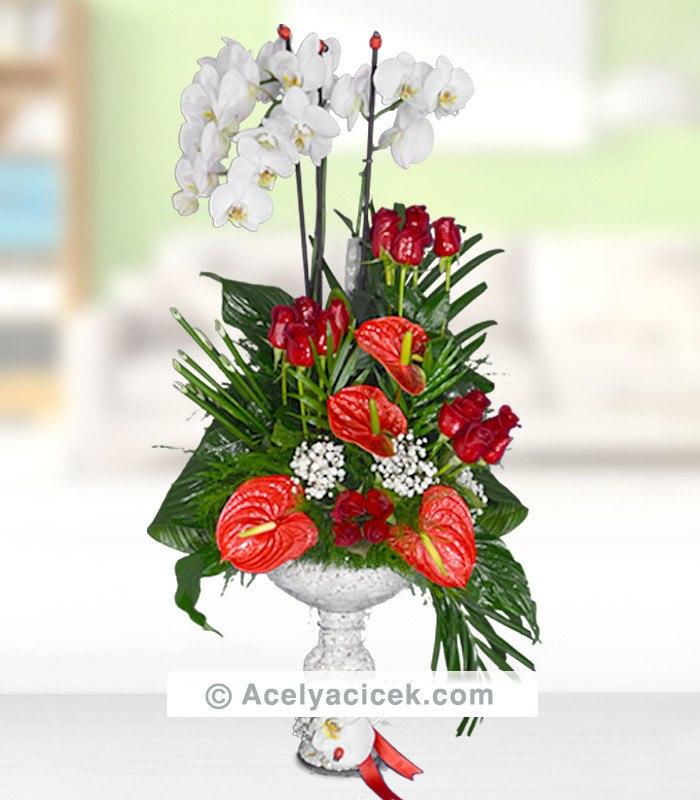Orkide Çiçeği ve Antoryum Aranjmanı